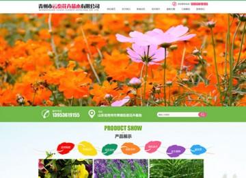 青州市云泰花卉苗木有限公司